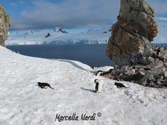 Antartide_011